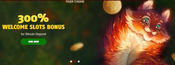 888 Tiger Casino 888tiger Com 25 Free Bonus No Deposit Required
